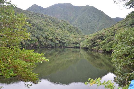 御代ヶ池 ツブガネ森(5300年前に噴火)の麓にある堰止湖です