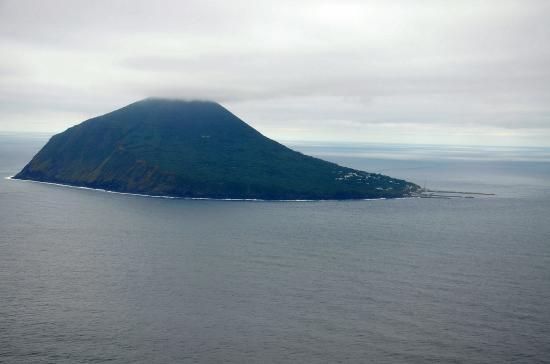 利島宮塚山(432m)手入れの行き届いた椿島