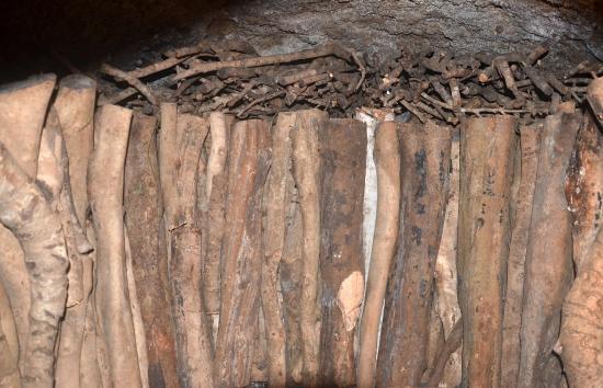 窯の内部 上げ木(差し木)と立木