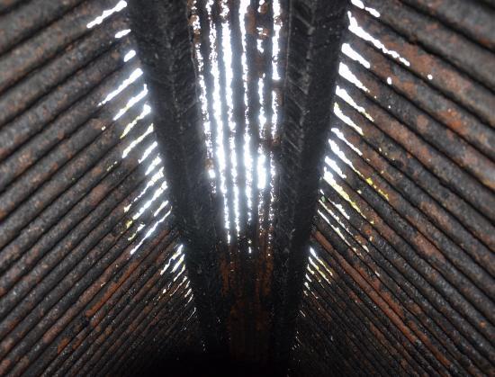 煙突上部の屋根