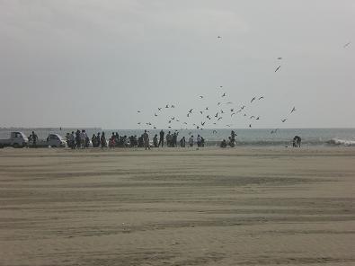 大洗海岸 027