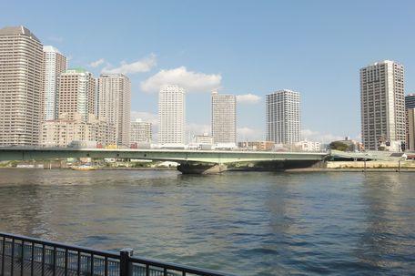 隅田川の近く