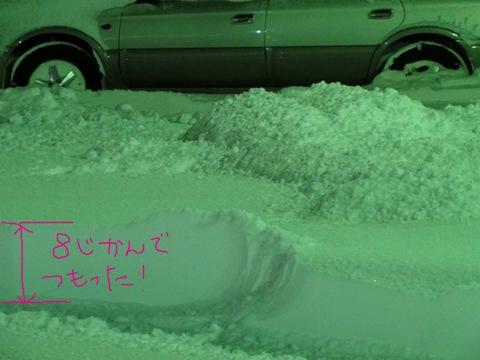 降った降った!(2011.01.13)