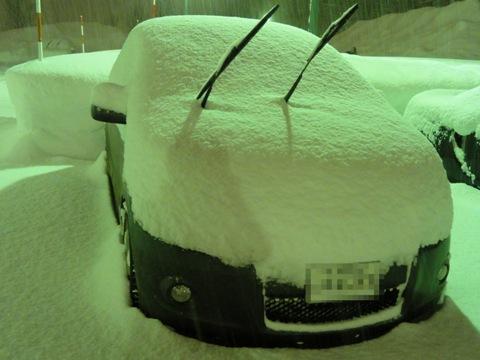 今日の爆雪03(2011.02.01)