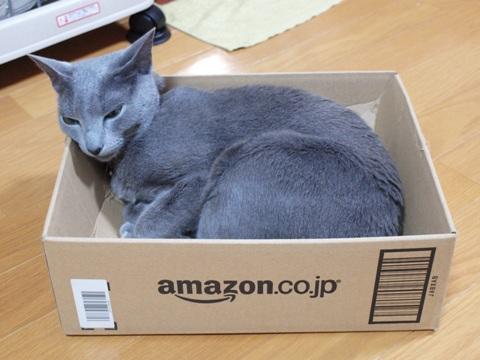 AmazonBox01(2011.02.04)