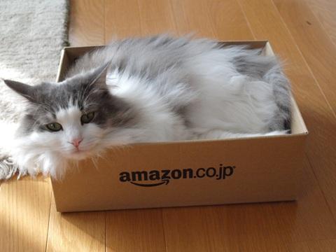 AmazonBox02(2011.02.04)