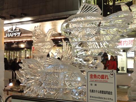 金魚の戯れ(2011.02.11)