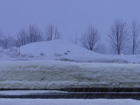 まだ雪01(2011.03.25)