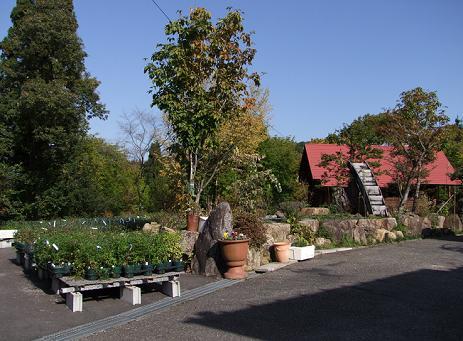 春日井様宅の正面のお庭 2008
