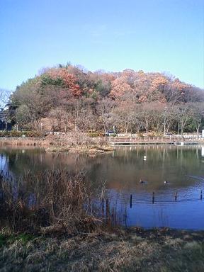 上の公園②