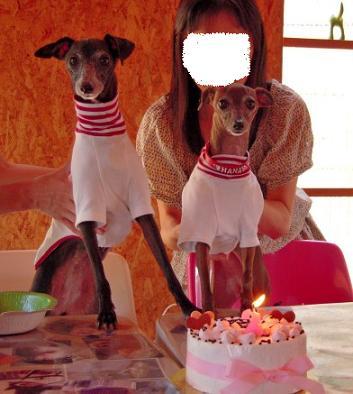 ♪♪♪ HAPPY BIRTHDAY ♪♪♪