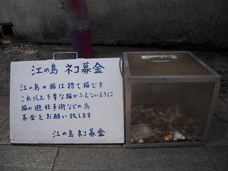 猫募金(^ー^)