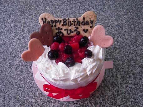 あーちゃん13歳のお誕生日おめでとう♪♪♪