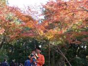 20061202kamakura4