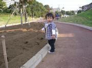 20061105ray