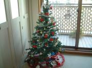 2005christmas1