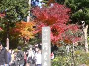 20071201kamakura1