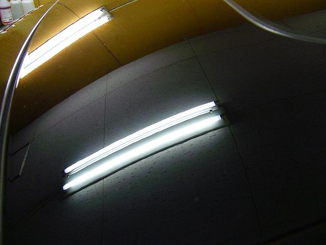 P1190012-161.jpg