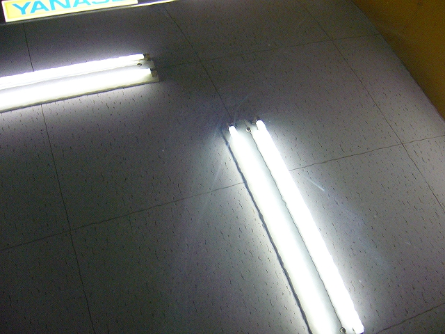 P1190393-168.jpg