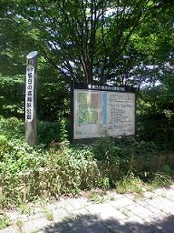 tatumi2.jpg