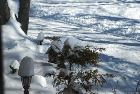 雪の日 006