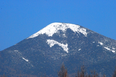 山肌プーマ 004