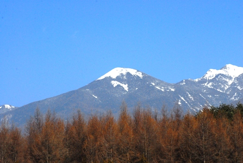 山肌プーマ 005