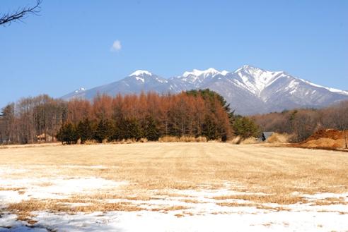 山肌プーマ 011