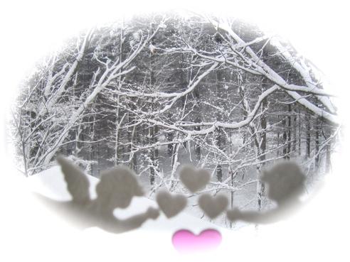 画像 通路雪景色1