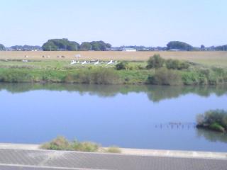 今日の江戸川