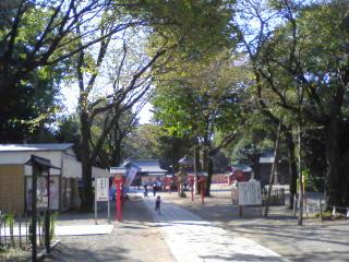 鷲宮神社の秋