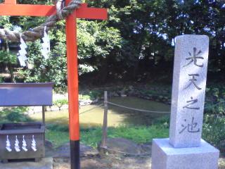 竜神の池IN鷲宮