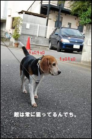 DSC_1614.jpg