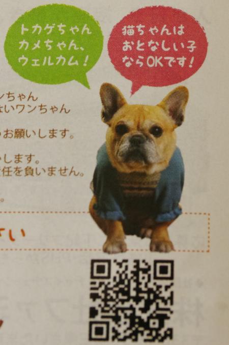 繝「繝・Ν繝・ン繝・繝シ_convert_20120330000842