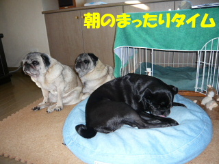 2008_1014non0005b.jpg