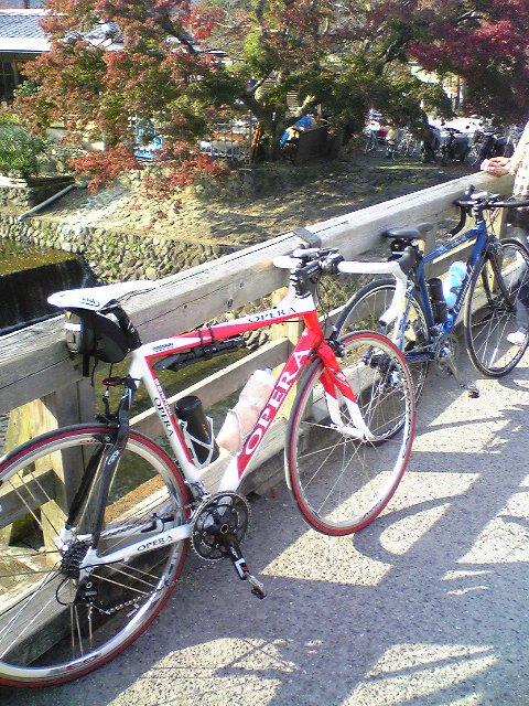 20081115_嵐山