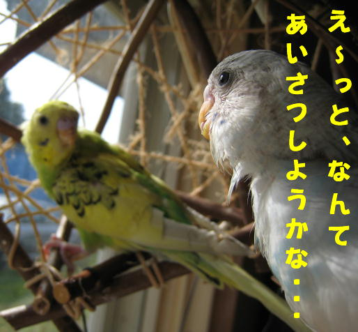 IMG_083315.jpg