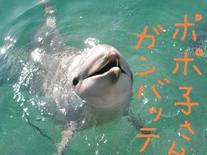 フリー素材屋Hoshino2