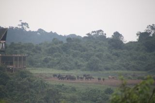 201108kenya - 201110010018