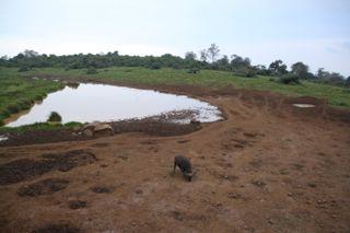 201108kenya - 201110020014