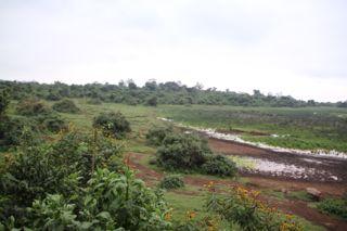 201108kenya - 201110020013