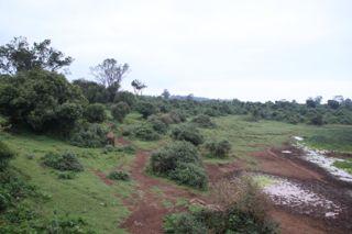 201108kenya - 201110020017