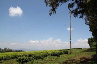 201108kenya - 201110110014