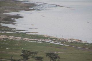 201108kenya -  20111025012