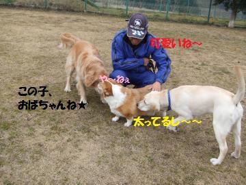 002_convert_20110209025113.jpg