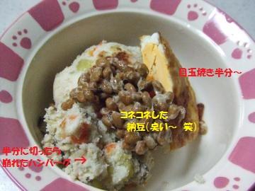 003_convert_20110308231619.jpg