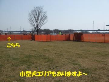 005_convert_20110228022355.jpg
