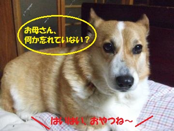 006_convert_20110304010502.jpg