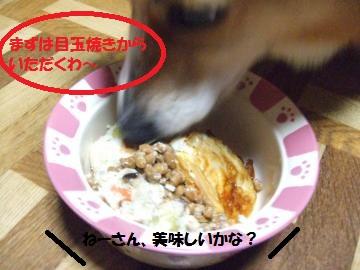 010_convert_20110308231829.jpg