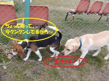017_convert_20110209025602.jpg